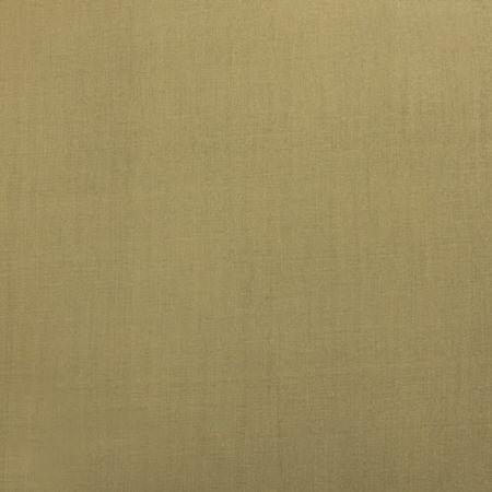 Stardust Silver Cotton Silk Swatch
