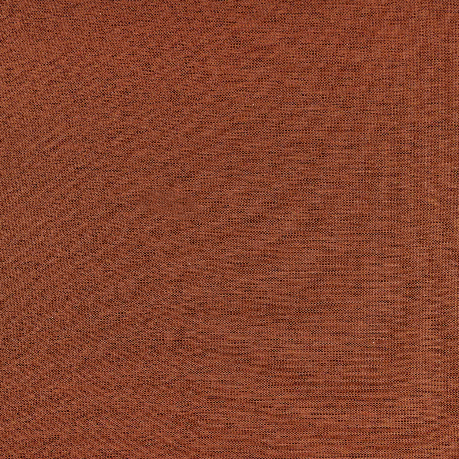 Persimmon Bellino Blackout Swatch