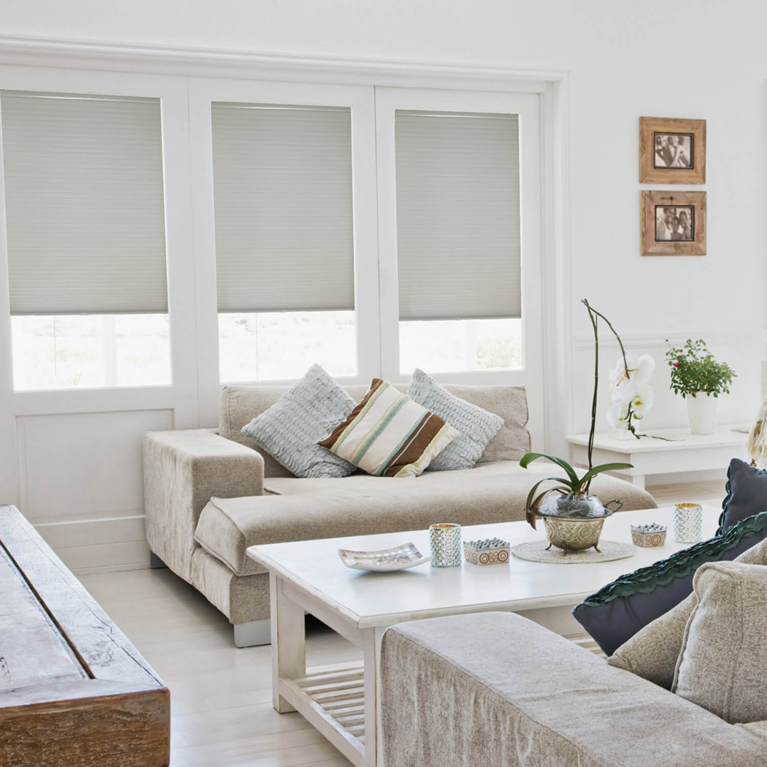 Cordless Light Filtering Double Cell Cellular Shade