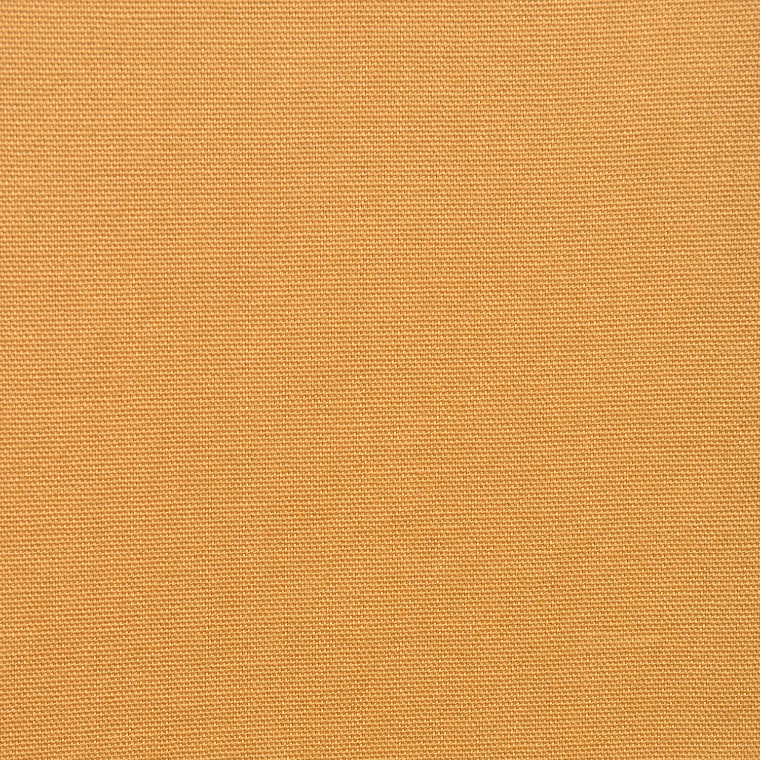 Spicy Mustard Solid Cotton Swatch