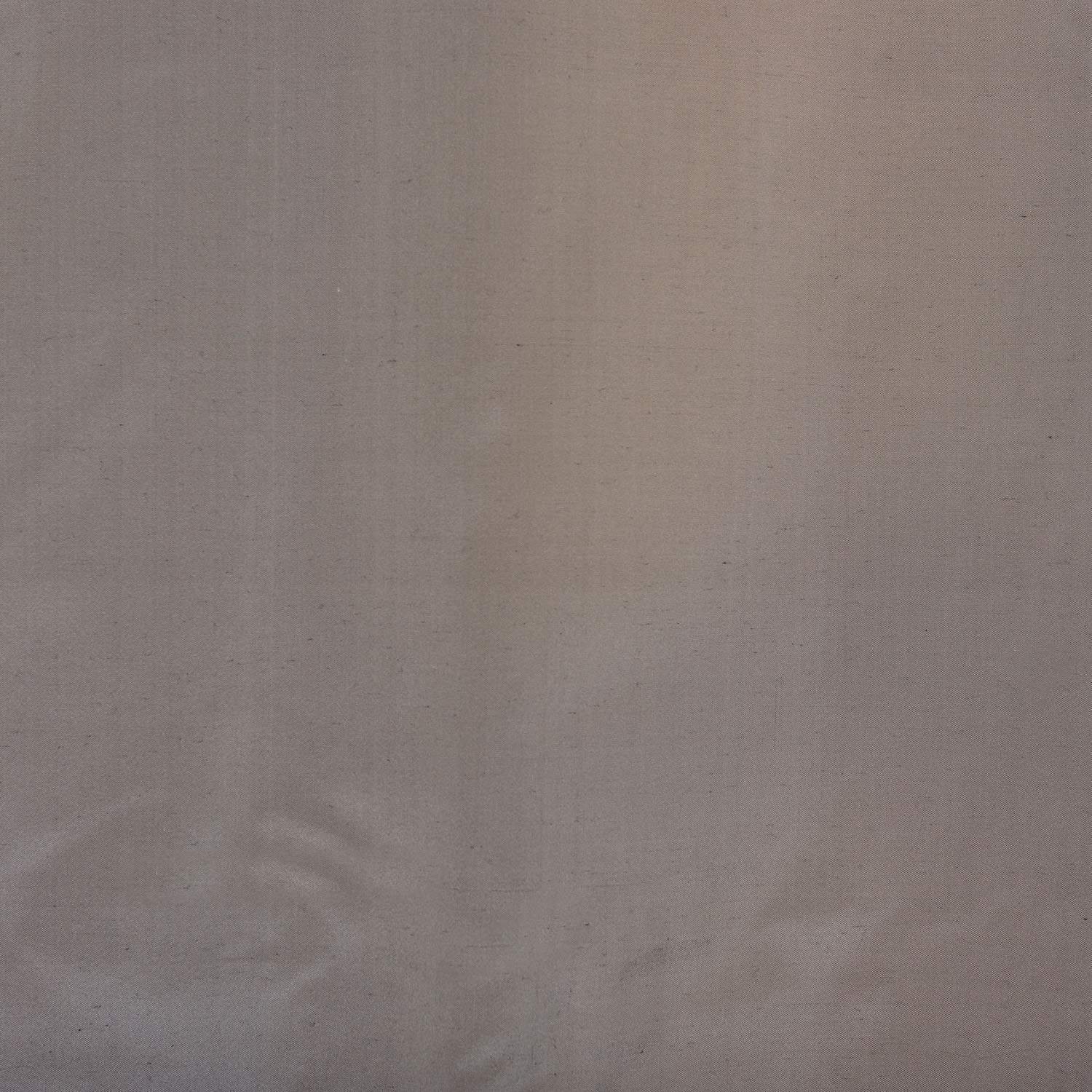 Nickel Silk Taffeta Swatch